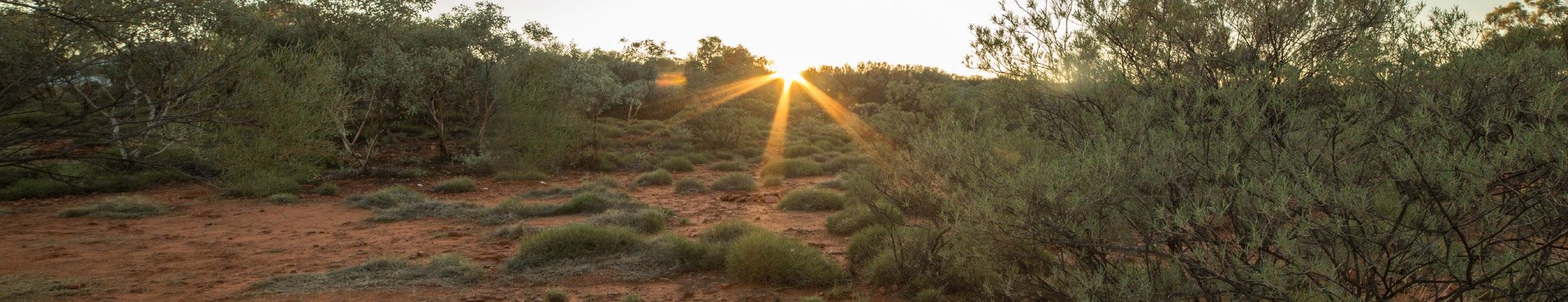 Australian Outback | Shine Lawyers