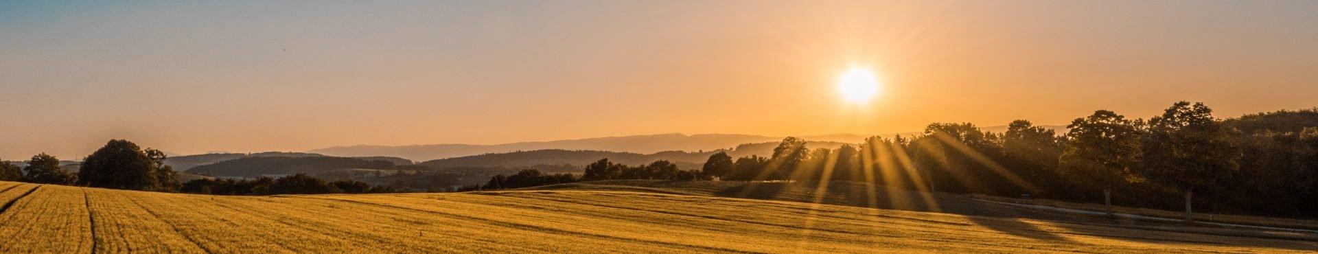 Pristine farmland   Shine Lawyers