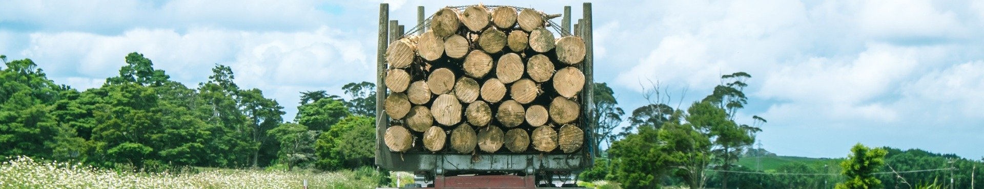 Logging Truck driving on the highway | Shine Lawyers