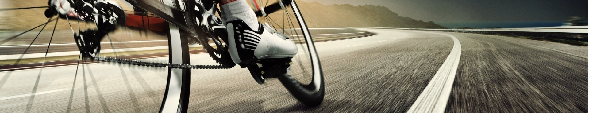 Professional road cyclist | Shine Lawyers